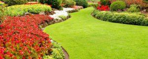 landscaping and maintenance Inspirational landscape maintenance sunrise